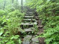 滑りやすい石敷きの狭い階段